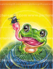 artist of frog illustration