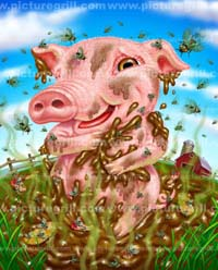 illustrator pig art and illustrations